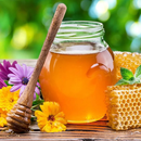 Натуральный алтайский мёд. Вкусно, полезно, недорого! Не нужно ждать!
