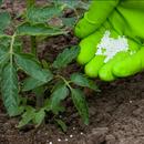 Удобрения, грунт и средства против насекомых, зверей - все для отличного урожая