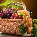 Лучшее из Сибири! Сочный виноград  от агрофирмы Семена Алтая.21