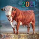 Календари 2021 год ,новогодняя продукция