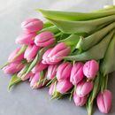 Живые тюльпаны к 8 марта!