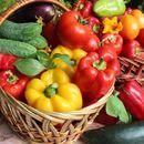 Биотехника. Семена овощей, торфяные таблетки, газон, удобрения-9