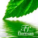 Косметика Флоресан: воплощая мечты о красоте