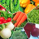 Семена для сада и огорода по отличным ценам