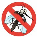 Стоп комарики - остановим комаров. Репелленты на растительной основе