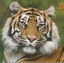 Акция на календари 2022, большой выбор, цены от 1,96р.,ежедневники,блокноты-17