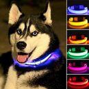 Светящиеся ошейники для животных- ваш питомец всегда будет в безопасности -1