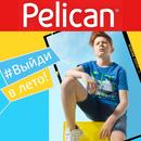Берём курс на лето! Распродажа для мальчиков от Рelican!