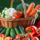 Кокосовый субстрат, сидераты, гидрогель - все для качественного урожая!