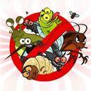 Эффективная борьба с насекомыми и грызунами