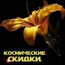 Вы ждали скидок на цветы? Налетай, покупай и сажай!